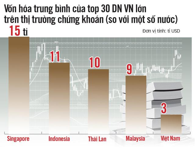 Sau Bia Sài Gòn, doanh nghiệp Việt sợ bị thâu tóm - Ảnh 3.