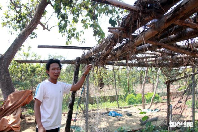 Huyện Krông Pắk hứa tìm việc cho hơn 500 giáo viên bị cắt hợp đồng - Ảnh 5.
