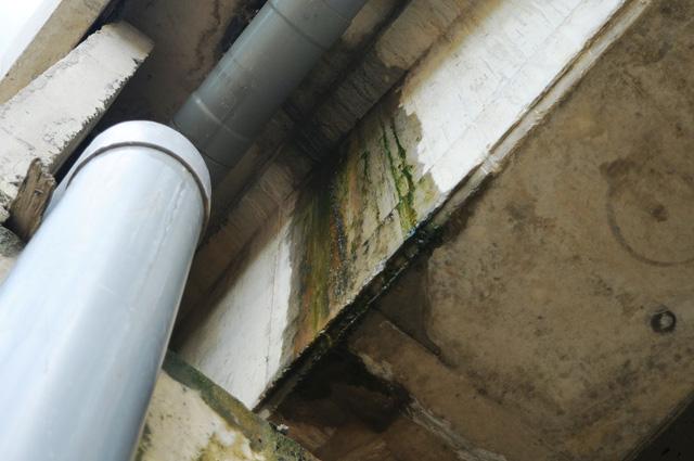 Tiếp tục sửa chữa cầu, hầm chui cao tốc bị thấm nước - Ảnh 6.