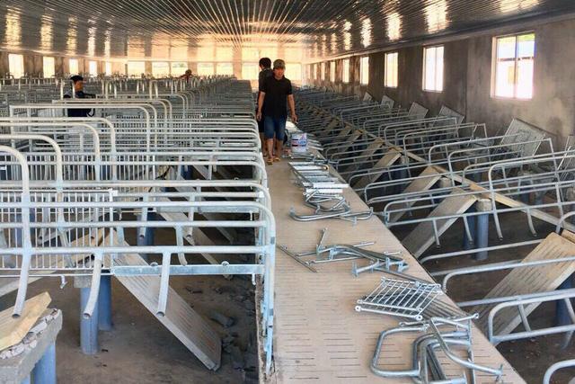 Tháo dỡ trại heo xây trái phép ở đầu nguồn sông Đồng Nai - Ảnh 1.