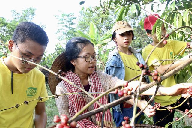 Sinh viên lên rẫy học làm kinh tế xanh - Ảnh 1.