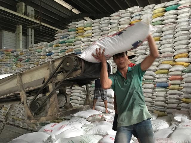 Doanh nghiệp được tự do xuất khẩu gạo hữu cơ - Ảnh 1.