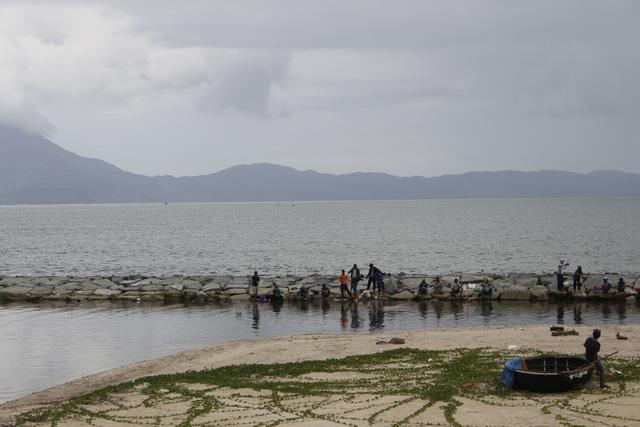 Vụ cá chết trắng biển Đà Nẵng: đề nghị giám sát việc dùng mìn đánh cá - Ảnh 2.
