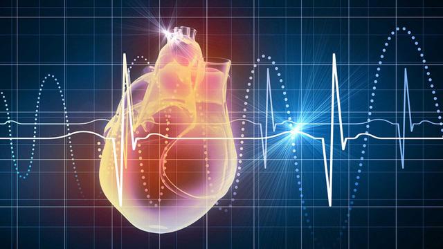 Điện giải và rối loạn nhịp tim - Ảnh 1.