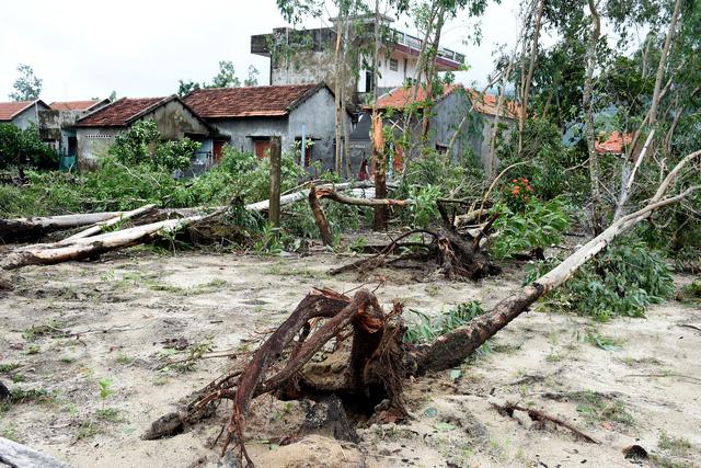 Phú Yên: Lốc xoáy làm hơn 100 ngôi nhà sập, tốc mái - Ảnh 11.
