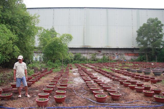 Bế tắc hướng giải quyết vụ hai nhà máy thép Đà Nẵng - Ảnh 2.