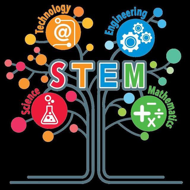 Giáo dục STEM cho trẻ nhỏ tốt nhất nên ở độ tuổi nào? - Ảnh 1.