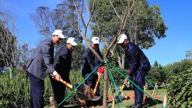 Trồng 125 cây hoa anh đào Nhật Bản tại Đà Lạt - Ảnh 1.
