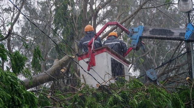 TP.HCM ngập diện rộng, cây ngã đè chết người đi đường - Ảnh 8.