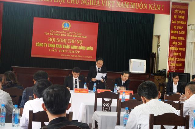 Hội nghị chủ nợ đồng ý phá sản công ty vàng Bồng Miêu - Ảnh 2.