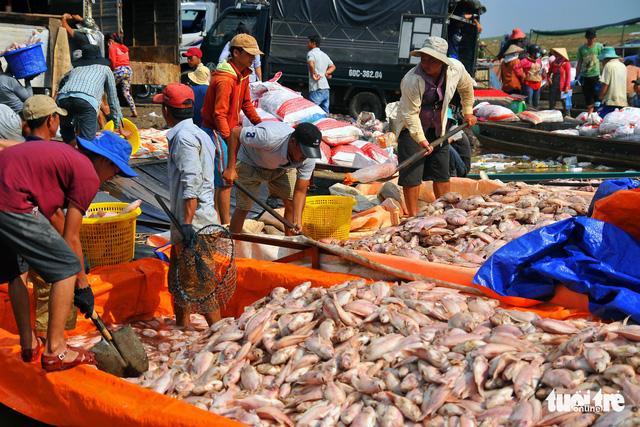 Hỗ trợ 12,2 tỉ đồng cho 129 hộ dân nuôi cá lồng bè trên sông La Ngà - Ảnh 1.