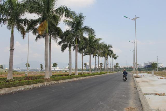 Sau chỉ đạo của lãnh đạo Đà Nẵng, đất Hòa Xuân giảm nhiệt - Ảnh 3.