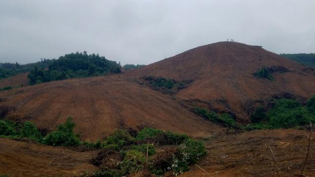 2 hecta rừng tự nhiên biến mất trong báo cáo gửi UBND tỉnh - Ảnh 4.