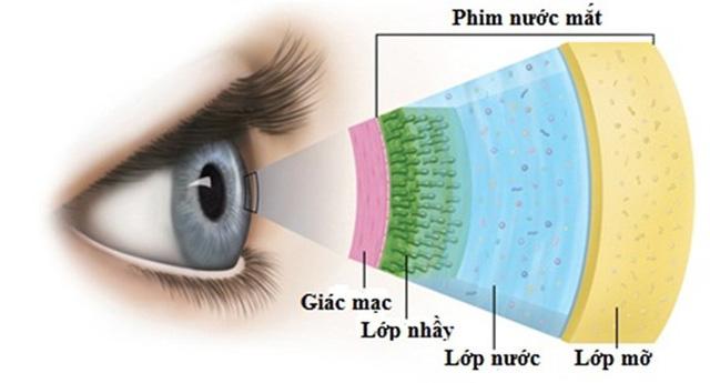 Khô mắt - nguyên nhân và điều trị - Ảnh 1.
