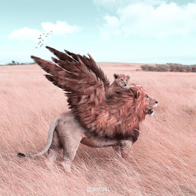 Động vật trong mắt thánh photoshop - Ảnh 8.