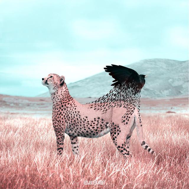 Động vật trong mắt thánh photoshop - Ảnh 11.