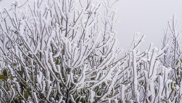 Không khí lạnh đang tràn xuống miền Bắc và Bắc Trung Bộ - Ảnh 1.