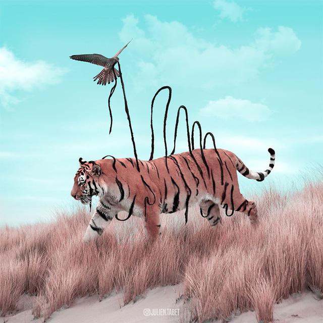 Động vật trong mắt thánh photoshop - Ảnh 14.