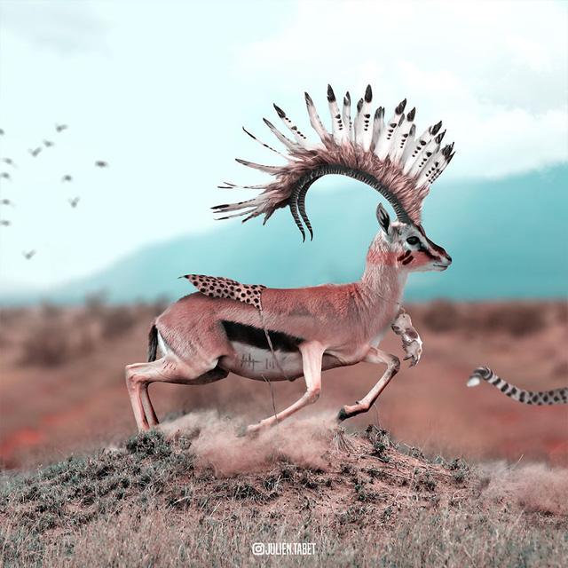 Động vật trong mắt thánh photoshop - Ảnh 15.