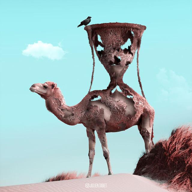 Động vật trong mắt thánh photoshop - Ảnh 16.