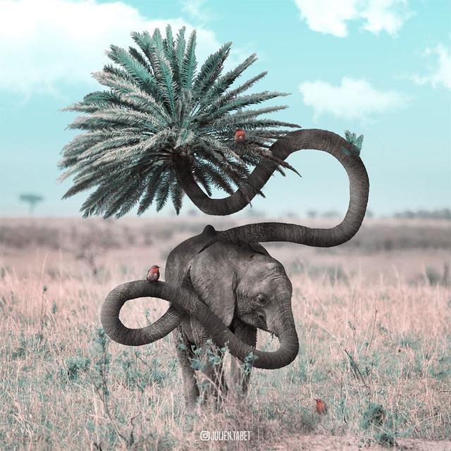 Động vật trong mắt thánh photoshop - Ảnh 17.