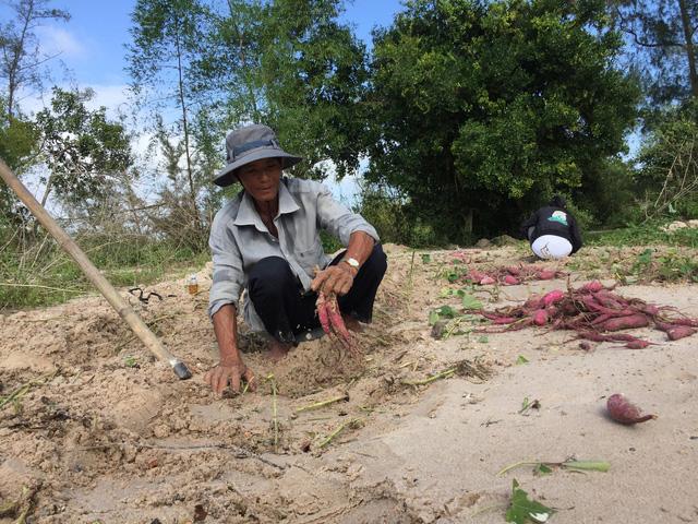 Quảng Nam: Dứt mưa nhưng quốc lộ 1 vẫn ngập sâu - Ảnh 5.