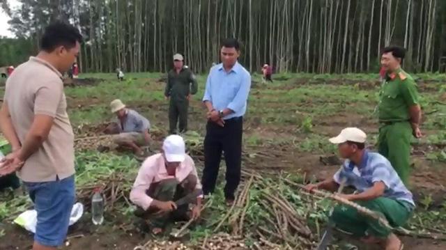Dừng giao khoán đất rừng, đặc cách đầu tư - Ảnh 3.