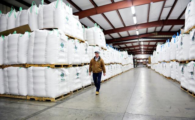 Trung Quốc mua trở lại lượng lớn đậu nành của Mỹ - Ảnh 1.