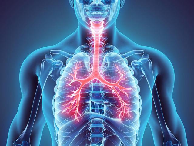 Phòng ngừa bệnh hô hấp mạn tính - Ảnh 1.
