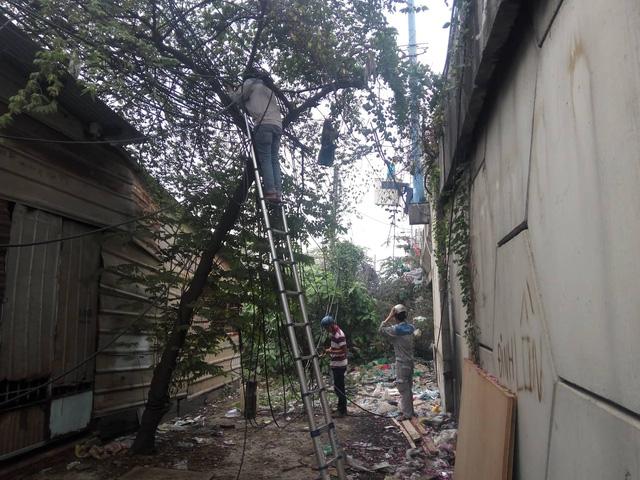 Dân đốt rác làm cháy dây cáp viễn thông ở TP.HCM  - Ảnh 1.