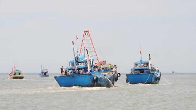 Mùa cá cơm bây giờ, khai thác vài ngày đã không còn - Ảnh 1.