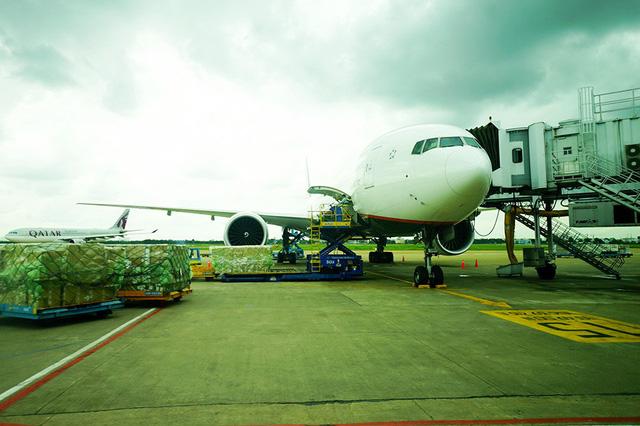 Hãng hàng không ngoại tăng tốc mở đường bay vào Việt Nam - Ảnh 1.