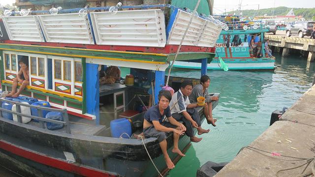 Hải sản cạn kiệt dần, VN tính đến khả năng cấm biển - Ảnh 1.