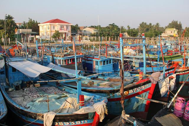 2019, Việt Nam tính cấm khai thác thủy sản vùng biển nào? - Ảnh 1.