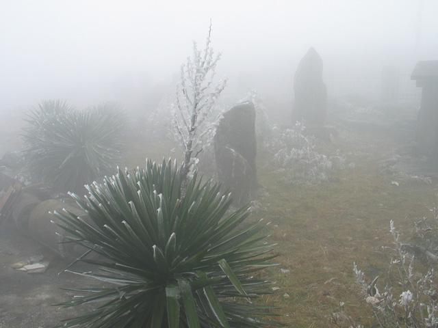 Nhiệt độ xuống âm 0,5 độ, băng giá xuất hiện tại Mẫu Sơn - Ảnh 1.
