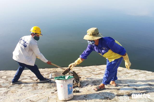 Cá ở hồ điều hòa Cửa Nam chết do nước ô nhiễm - Ảnh 2.