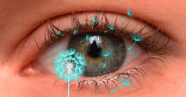Dị ứng mắt và cách điều trị - Ảnh 1.