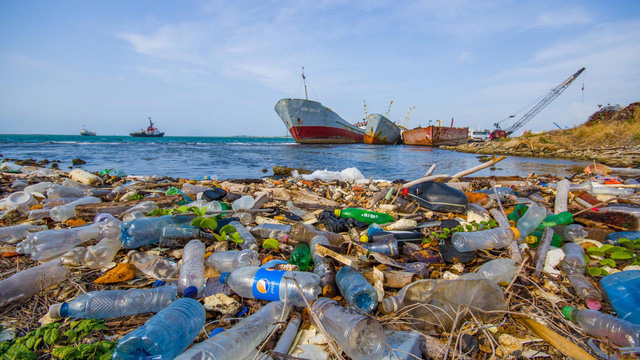 Rác thải nhựa làm ô nhiễm những tầng sâu nhất của đại dương - Ảnh 1.