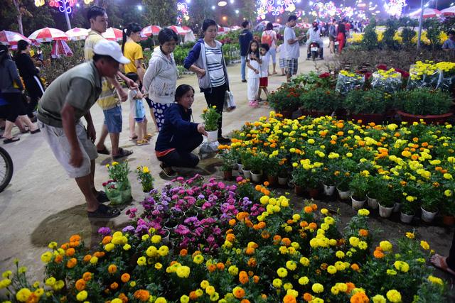 Sài Gòn khai mạc chợ hoa xuân Bình Điền - Ảnh 6.