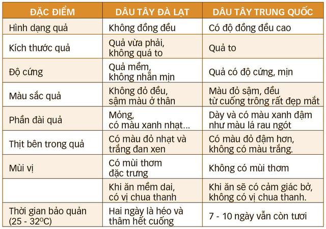 Phân biệt dâu tây Đà Lạt, dâu tây Trung Quốc - Ảnh 2.