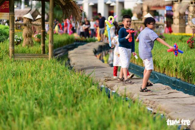 Khai mạc Hội hoa xuân Phú Mỹ Hưng trong khuôn viên 7 ha - Ảnh 8.