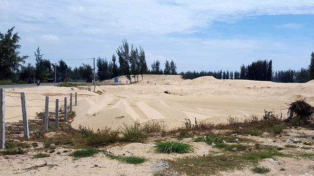 Phú Yên mất sổ họp vụ cho phá rừng làm dự án - Ảnh 2.