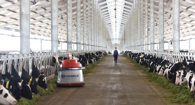 Vinamilk khánh thành trang trại bò sữa công nghệ cao tại Thanh Hóa - Ảnh 4.