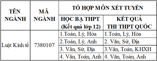 Học luật kinh tế ở ĐH Duy Tân không lo thiếu việc làm - Ảnh 2.