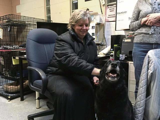 Gia đình vỡ òa sung sướng khi tìm thấy chó lạc 10 năm - Ảnh 2.