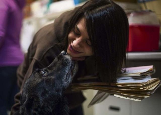 Gia đình vỡ òa sung sướng khi tìm thấy chó lạc 10 năm - Ảnh 4.
