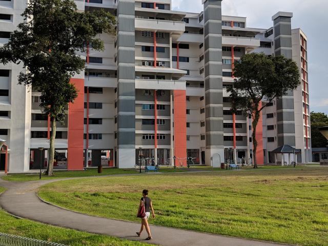 Chung cư HDB Singapore: Thảm họa cho chủ hộ nếu mèo... chui vô nhà - Ảnh 1.