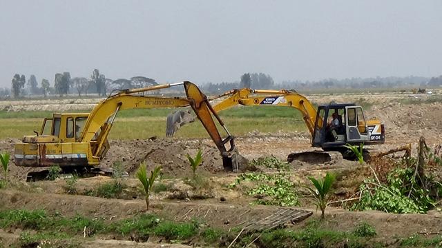 Long An sẽ phạt người tự ý đào ruộng lúa làm ao nuôi cá - Ảnh 1.