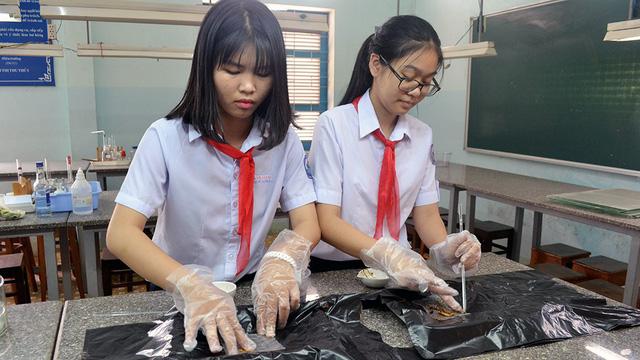 Học sinh lớp 9 làm dự án cho sâu ăn rác thải - Ảnh 1.
