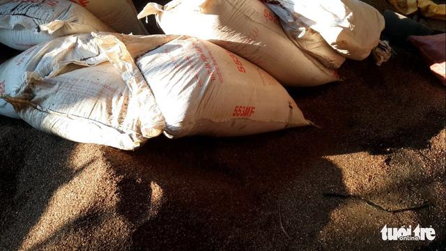 Công an Đắk Nông tung trinh sát đi điều tra về cà phê pin - Ảnh 2.